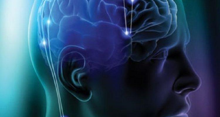 Limba si influentele sale asupra creierului